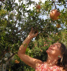 Worte sind reife Granatäpfelter dem Granatapfelbaum