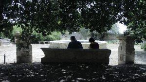Haikur-Schreibreise.Unter den alten Bäumen von Donnafugata